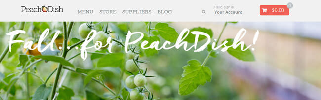 peach dish homepage