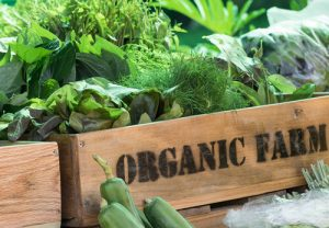 sun basket organic