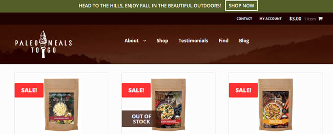 Paleo Meals To Go homepage