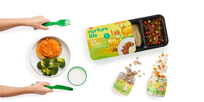 Nutrition life meals on white background