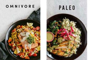 Green Chef Recipes