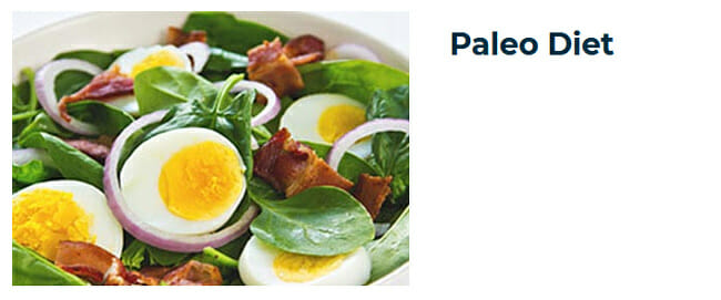 20Dishes paleo diet
