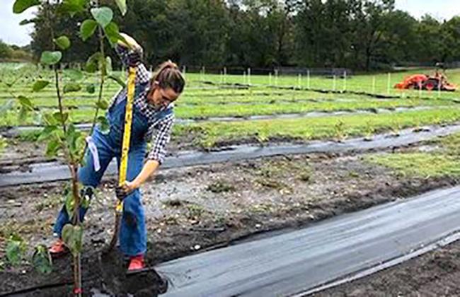 Once Upon A Farm women work on farm