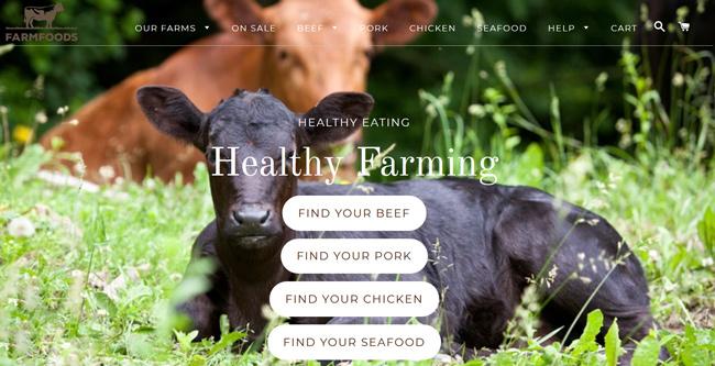 FarmFoods printscreen homepage