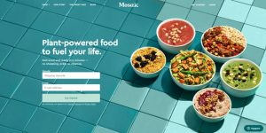 Best New Meal Delivery Services 2021 Mosaic Meals